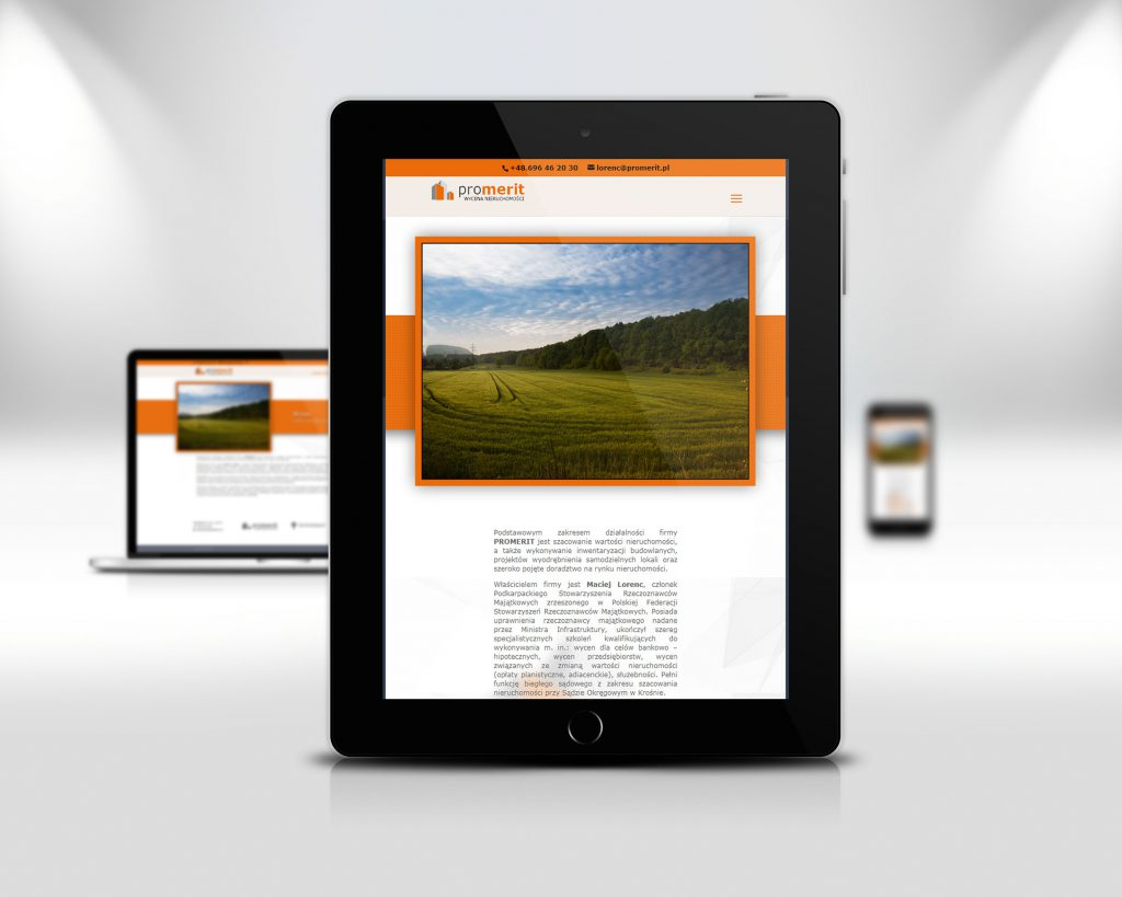 promerit.pl - wersja strony na tablety